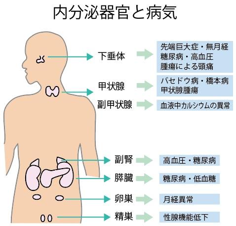 病 症状 橋本