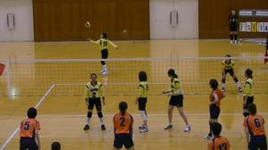 volleyball04.jpg